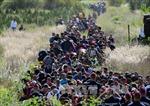 EU nhất trí tăng cường trục xuất người nhập cư trái phép