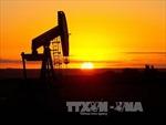 Giá dầu có tuần khởi sắc nhất từ cuối tháng 8