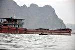 Chìm tàu chở 3.000 tấn than, 7 thuyền viên thoát chết