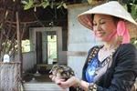 Cù lao vịt trời của nữ Việt Kiều