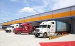 Phát triển logistics hỗ trợ doanh nghiệp xuất nhập khẩu