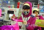 Sẽ có thêm 14,5 triệu lao động Việt Nam có việc làm vào năm 2025