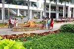 Người Sài Gòn nô nức du xuân ở hội hoa xuân