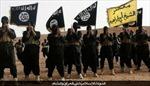 34 nhóm phiến quân liên minh với IS