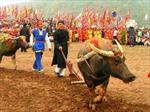 Nghiêm cấm các hoạt động thương mại lễ hội
