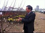 Phát triển vùng trồng hoa phía bắc