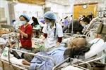 8 ngày Tết, hơn 267.500 lượt người vào viện