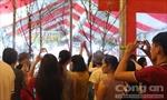 Gần 50.000 người vui lễ hội hoa anh đào tại Đồng Nai