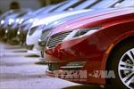 Vì sao 280.000 xe Ford bị thu hồi?