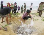 Hỗ trợ ngư dân gặp khó khăn do cá chết bất thường