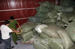Phát hiện gần 10 tấn nguyên liệu thuốc bắc nghi nhập lậu
