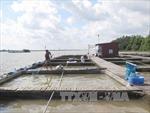 Xây dựng 6 thủy điện trên sông Hồng mới chỉ là ý tưởng ban đầu