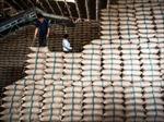 Myanmar thu mua 30.000 tấn gạo dự trữ