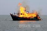 Palau đốt tàu cá Việt Nam đánh bắt trái phép