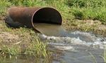 Bắt quả tang cơ sở tái chế nhựa xả thải ra sông Vàm Cỏ Đông