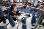 Đồng NDT yếu đi sẽ ảnh hưởng doanh nghiệp Việt Nam