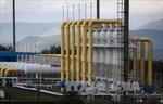 Căng thẳng vùng Vịnh có thể khiến giá dầu tăng vọt