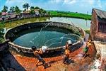 Giếng làng mùa khô khát