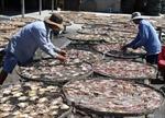 """Làm rõ phản ánh """"kiểm định khống"""" hơn 800 thức ăn thủy sản"""