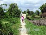 Tây Ninh xóa cầu tạm ở vùng sâu