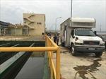 Lắp đặt trạm giám sát nguồn thải tại Formosa