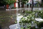 Bắc Bộ và Thanh Hóa tối nay tiếp tục mưa to