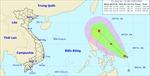 Tin về áp thấp nhiệt đới