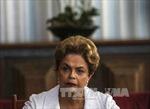 Thượng viện Brazil bắt đầu phiên luận tội bà Dilma Rousseff