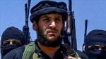 Nga tiêu diệt thủ lĩnh hàng đầu IS