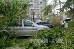 Bão Meranti gây thiệt hại lớn ở Đài Loan