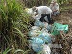 Làm rõ vụ chôn lén hàng tấn rác thải y tế tại Bệnh viện Đà Bắc