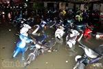 Hơn 1.000 xe máy bị nhấn trong cơn mưa lớn tại TP Hồ Chí Minh