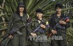 """EU đưa FARC ra khỏi """"danh sách khủng bố"""""""