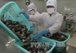 Mỹ công bố kết quả rà soát sơ bộ sản phẩm tôm Việt Nam