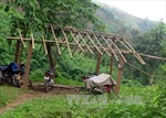 Điện Biên xác nhận có sai phạm trong cấp hộ khẩu tại Mường Nhé