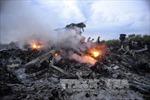 Malaysia đề xuất đưa vụ MH17 ra Tòa án Hình sự Quốc tế