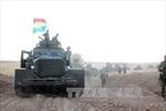 Quân đội Iraq giành lại nhiều khu vực ở ngoại ô Mosul