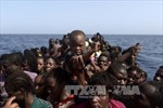 Giải cứu thêm hàng nghìn người di cư ngoài khơi Libya