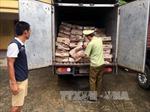 Bắt hơn 1,3 tấn thực phẩm đông lạnh chuyển trái phép qua biên giới
