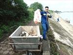 Không phát hiện thêm cá chết ở hồ Linh Đàm