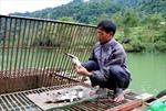 Mòn mỏi đợi công bố chất lượng môi trường nước sông Gâm