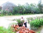 Huyện Nghĩa Hành, Quảng Ngãi ngập sâu trong lũ
