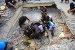 Chưa có thông tin về người Việt Nam bị ảnh hưởng do động đất ở Indonesia