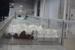 Kỹ thuật xây dựng chống sóng thần ở Nhật Bản