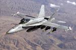 Máy bay F/A-18 của Mỹ rơi ở Nhật, phi công may mắn thoát nạn