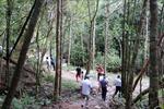 Phú Quốc phát triển du lịch sinh thái