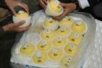 Hương vị Nhật Bản nổi tiếng thế giới tới Việt Nam