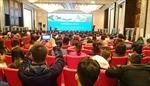 Vì sao khách Trung Quốc đến Việt Nam tăng?
