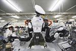 20 năm tới, 50% lực lượng lao động Nhật có thể là robot