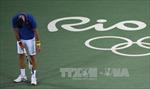 Lỡ đánh bóng vào khán giả, Djokovic phải xin lỗi